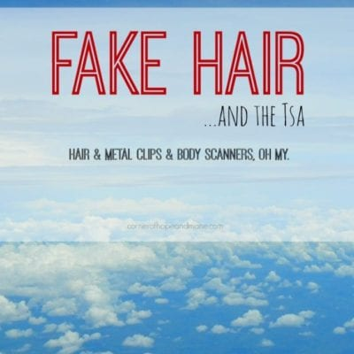 (H)air Travel: Fake Hair and the TSA